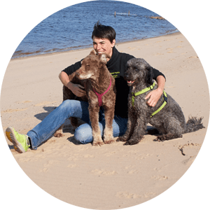 Hundetraining Einzelstunden Bremen