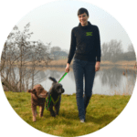 Hundeschule Bremen Einzeltraining