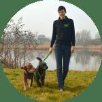 Leinenführigkeit-Hundeschule-Bremen