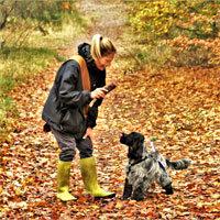 Antijagdtraining Hund
